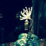 Kwiat z kolekcja biżuterii zaprojektowanej przez Dalego