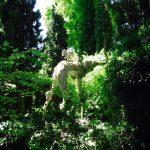Słoń w ogrodzie Gali