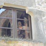 Salvador Dali w oknie
