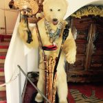 Miś polarny witający gości w domu Dalego